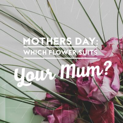 Mother's Day: Which Flower Suits Your Mum?